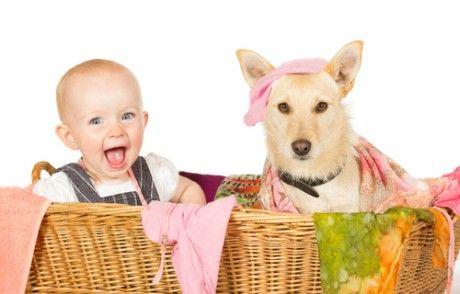 ребенок и белая собака