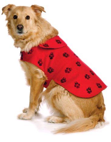 одежда для собак своими руками - фото и видео