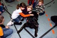 ребенок боится собаки 3
