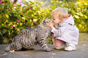 Кошечки и дети